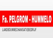 Pelgrom